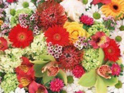 Чтобы поднять настроение, достаточно купить букет цветов