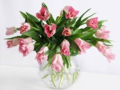 Продолжительность жизни срезанных цветов можно будет увеличить