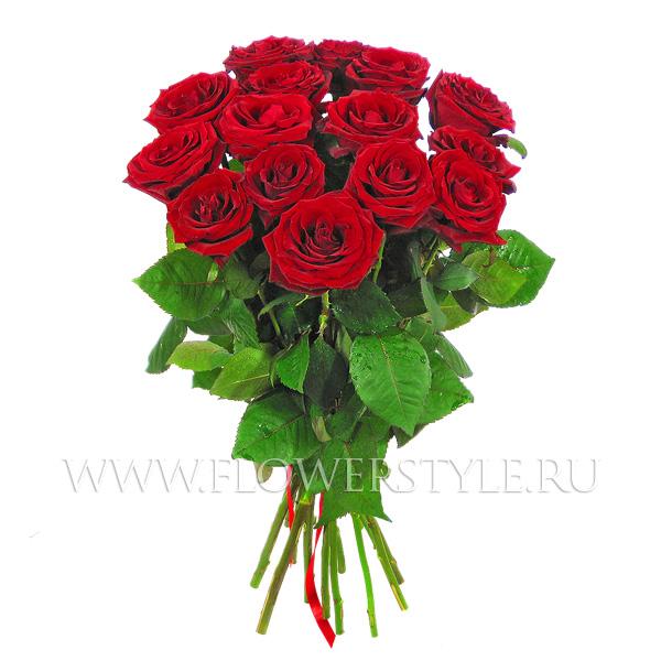 15 бордовых роз