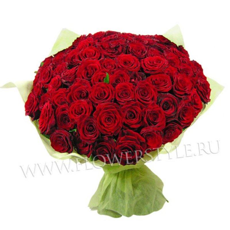 101 бордовая роза