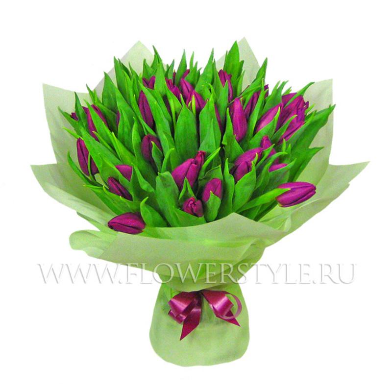 51 сиреневый тюльпан