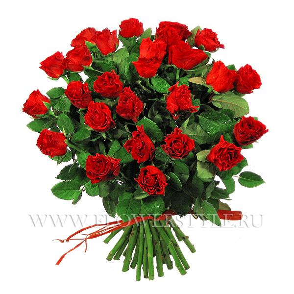 27 красных роз