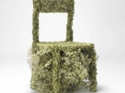 Мебель можно сделать и из цветов