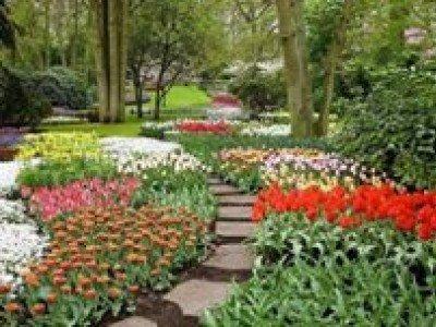 Многослойная «лазанья» из цветов радует глаз посетителей голландского парка