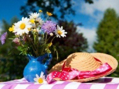 Виагра помогает продлить жизнь срезанным цветам