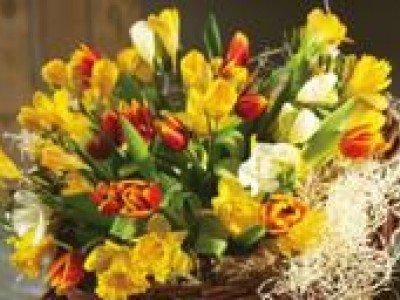 Закон, препятствующий флористам получить лицензию на продажу цветов и составление букетов, отменен