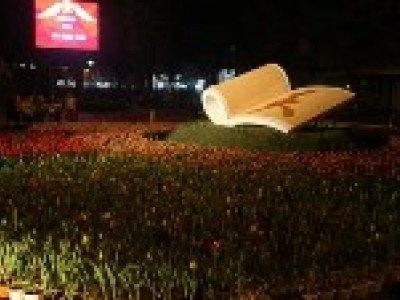 Цветочный фестиваль в Ханое