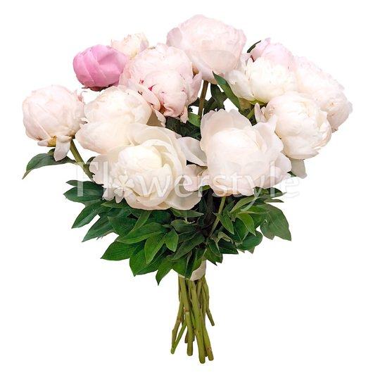 15 белых и розовых пионов дополнительные изображения