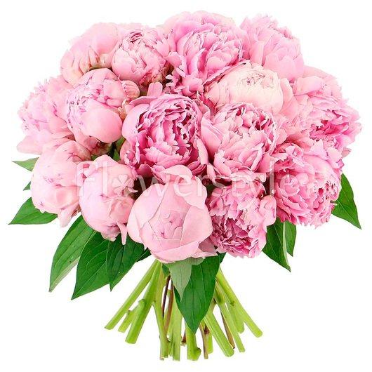 Подарочный букет из 21 нежно-розового пиона